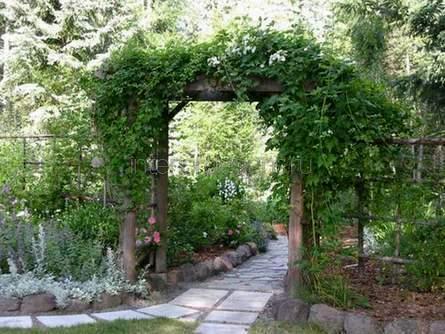 трельяжная арка на приусадебном участке