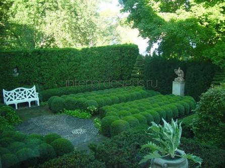 уютный сад возле дома