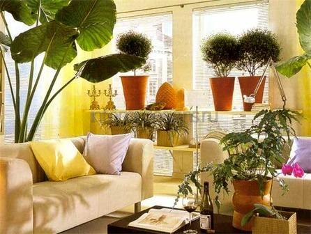 красивый декор для однокомнатной квартиры
