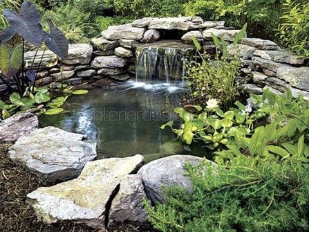 водный оазис на даче