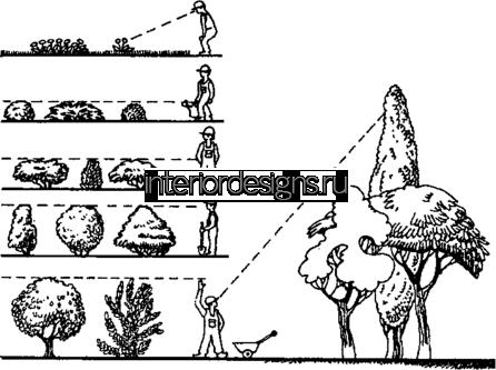 линейная перспектива земельного участка