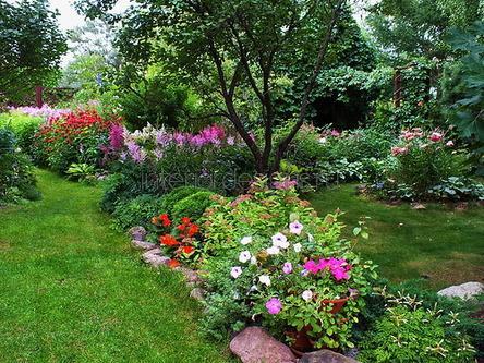 красивый сад на даче
