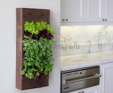 подвесные горшки для комнатных растений