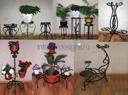 комнатные растения в квартире