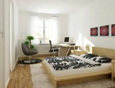 интерьер спальни-кабинета