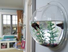 Круглый аквариум в интерьере