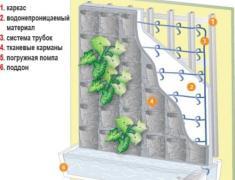 Макет живой стены в интерьере